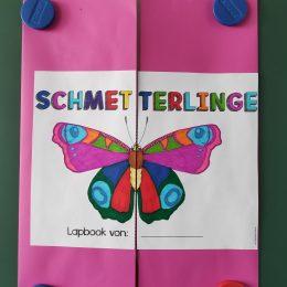 Schmetterlingsprojekt